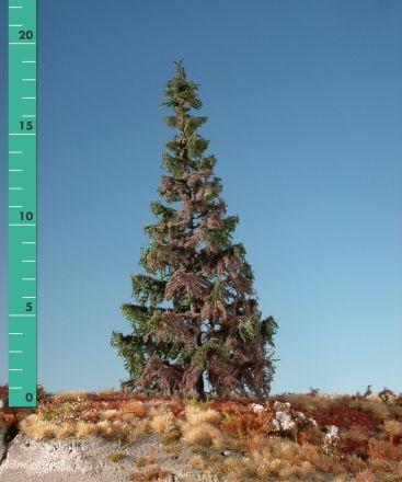 Silhouette Verweerde groene spar - Zomer - 1 (ca. 10-13cm) - N-Z (1:160-220) - (173-16)