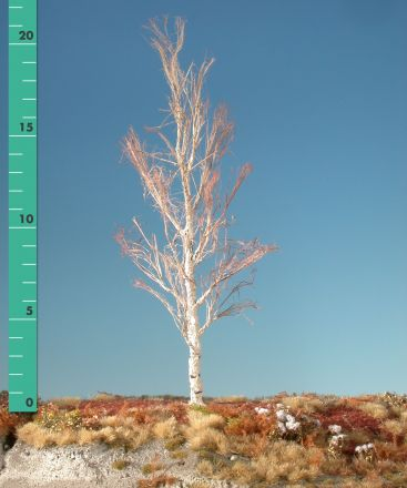 Silhouette Esp - Kaal - 2 (ca. 15-20cm) - H0 (1:87) - (215-20)
