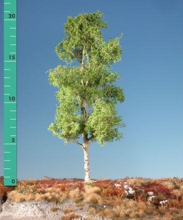Silhouette Esp - Lente - 2 (ca. 15-20cm) - H0 (1:87) - (215-21)