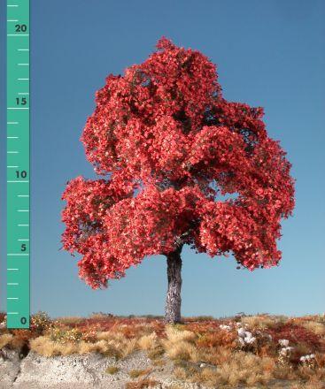 Silhouette Esdoorn - Late herfst (rood) - 3 (ca. 22-29cm) - H0 (1:87) - (230-35)