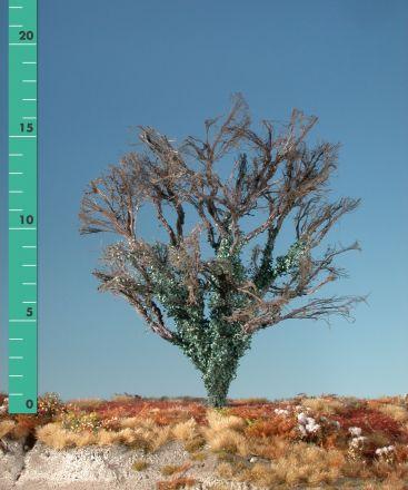 Silhouette Esdoorn met klimop begroeiing - Kaal - 2 (ca. 15-20cm) - H0 (1:87) - (231-20)