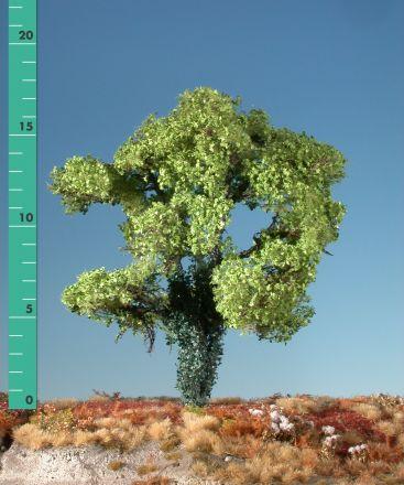 Silhouette Esdoorn met klimop begroeiing - Lente - 2 (ca. 15-20cm) - H0 (1:87) - (231-21)
