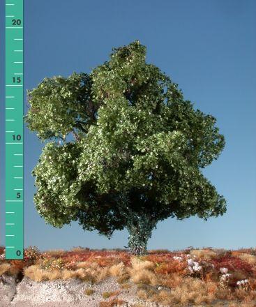 Silhouette Esdoorn met klimop begroeiing - Zomer - 2 (ca. 15-20cm) - H0 (1:87) - (231-22)