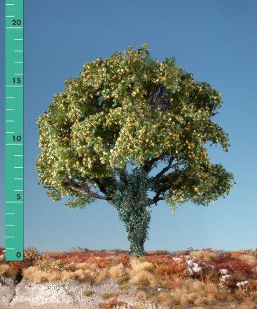 Silhouette Esdoorn met klimop begroeiing - Vroege herfst - 2 (ca. 15-20cm) - H0 (1:87) - (231-23)