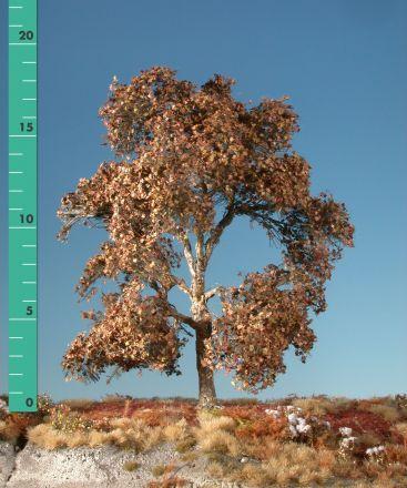 Silhouette Plataan - Late herfst - 2 (ca. 15-20cm) - H0 (1:87) - (233-24)