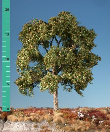 Silhouette Plataan - Vroege herfst - 3 (ca. 22-29cm) - H0 (1:87) - (233-33)