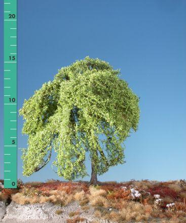 Silhouette Treurwilg - Lente - 1 (ca. 10-13cm) - H0 (1:87) - (240-11)