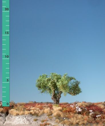 Silhouette Knotwilg - Zomer - 0 (< ca. 8cm) - H0 (1:87) - (241-02)