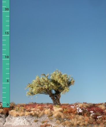Silhouette Knotwilg - Vroege herfst - 0 (< ca. 8cm) - H0 (1:87) - (241-03)