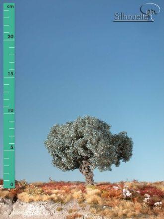 Silhouette Olijfboom - Zomer - 1 (ca. 10-13cm) - H0 (1:87) - (245-12)