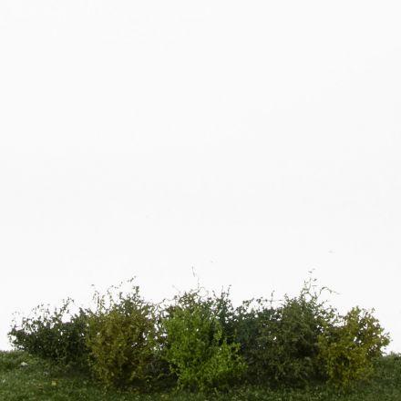 Silhouette Struiken assortiment, Profiline - Lente -  ca. 3cm - H0 (1:87) - (252-02)