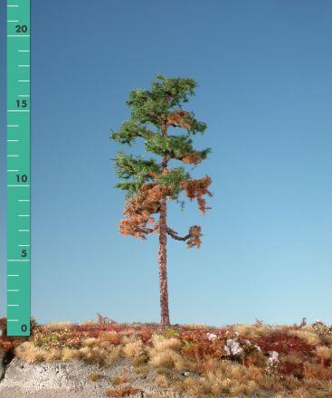 Silhouette Verweerde grove den - Zomer - 0 (< ca. 8cm) - H0 (1:87) - (270-06)