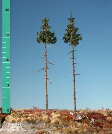 Silhouette Binnen bos groene spar - Zomer - 2 (ca. 15-20cm) - H0 (1:87) - (275-22)