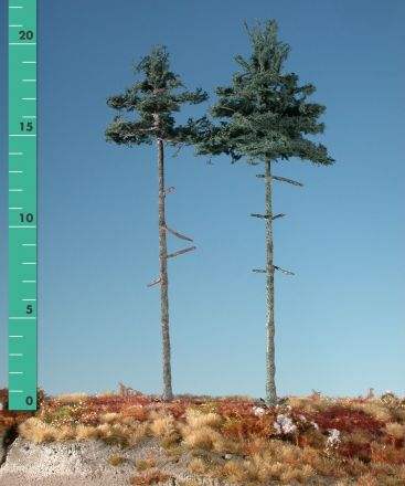Silhouette Binnen bos nordic spar - Zomer - 2 (ca. 15-20cm) - H0 (1:87) - (278-22)