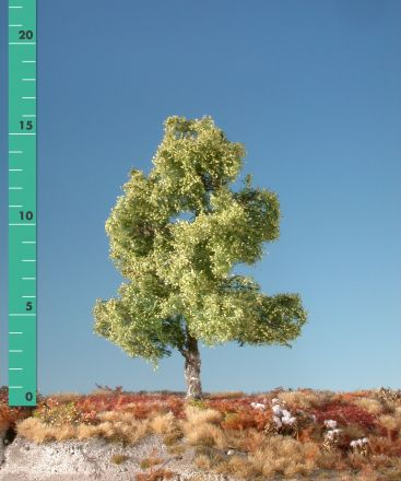 Silhouette Berk - Lente - ca. 57cm - 0-1 (1:45+) - (310-51)