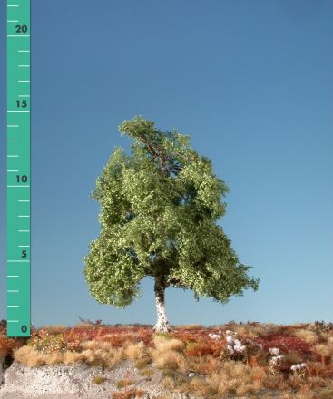 Silhouette Berk - Zomer - ca. 57cm - 0-1 (1:45+) - (310-52)