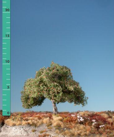 Silhouette Appelboom - Vroege herfst - ca. 19cm - 0-1 (1:45+) - (326-23)