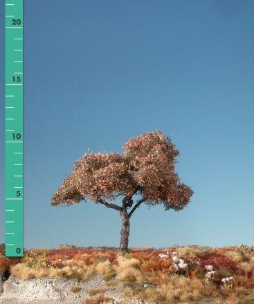 Silhouette Appelboom - Late herfst - ca. 19cm - 0-1 (1:45+) - (326-24)