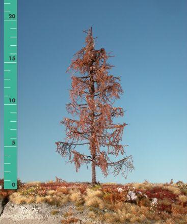 Silhouette Lariks - Kaal - ca. 39cm - 0-1 (1:45+) - (379-40)