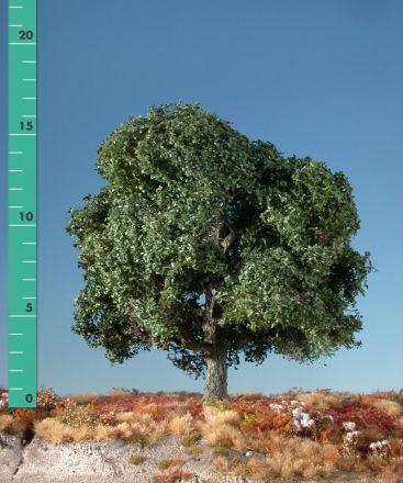 Silhouette Eik - Zomer - ca. 20cm - 0-1 (1:45+) - (380-22)