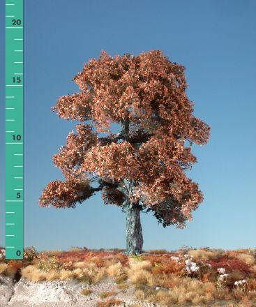 Silhouette Eik - Late herfst - ca. 20cm - 0-1 (1:45+) - (380-24)