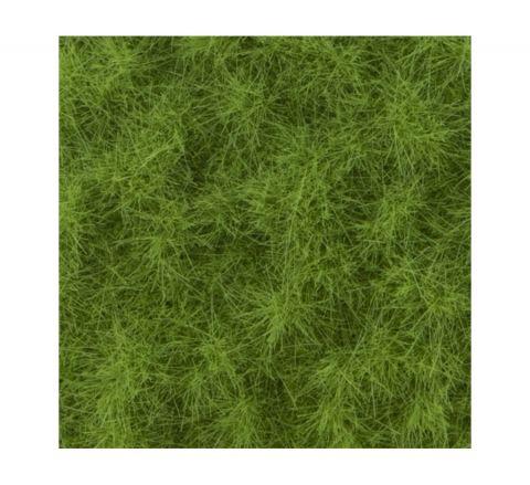 miniNatur Veeweide - Lente - ca. 8 x 15 cm - H0 (1:87) - (713-21MS)