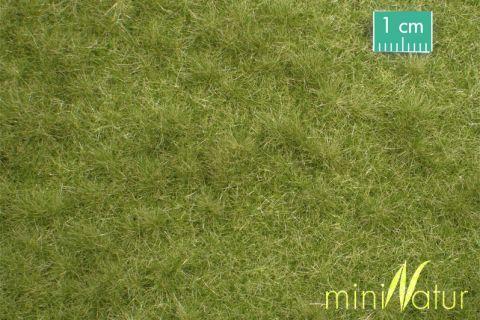 miniNatur Veeweide - Vroege herfst - ca. 8 x 15 cm - H0 (1:87) - (713-23MS)
