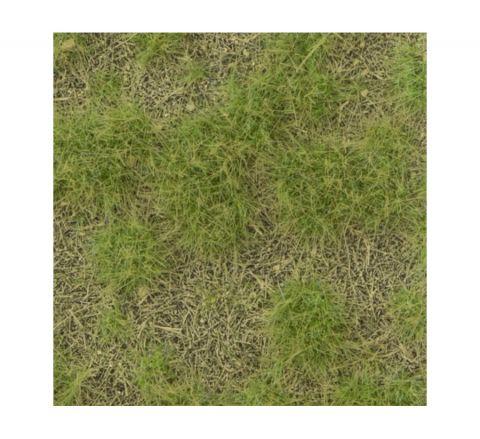 miniNatur Kalkrijke weide - Lente - ca.8 x 15 cm - H0 (1:87) - (719-21MS)