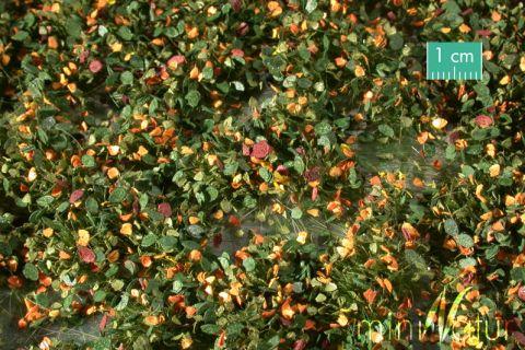 miniNatur Onkruid struiken - Vroege herfst - ca. 4 x15 cm - 0-1 (1:45+) - (725-33MS)