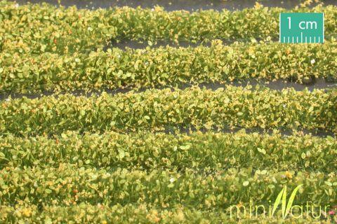 miniNatur Bloesem strepen - Geel - ca. 336cm - H0 (1:87) - (731-22)