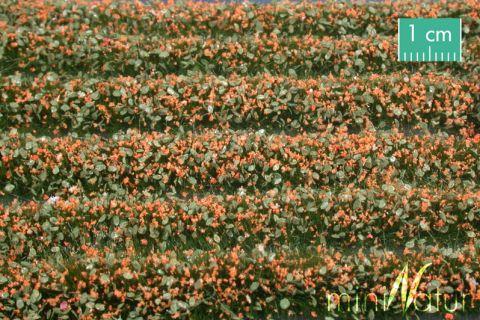 miniNatur Bloesem strepen - Oranje - ca. 336cm - H0 (1:87) - (731-25)