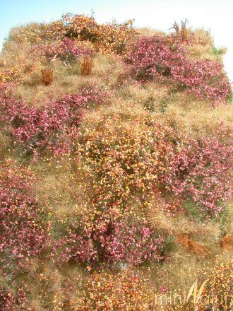 miniNatur Wildernis - Late herfst - ca. 25x15,5cm - H0 (1:87) - (732-24S)
