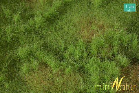 miniNatur Vruchtbare weide - Lente - ca. 63x50cm - H0 (1:87) - (733-21)