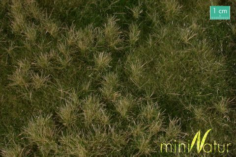 miniNatur Vruchtbare weide - Vroege herfst - ca. 63x50cm - H0 (1:87) - (733-23)