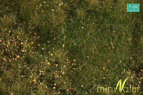 miniNatur Vruchtbare weide met onkruid - Vroege herfst - ca. 63x50cm - H0 (1:87) - (734-23)