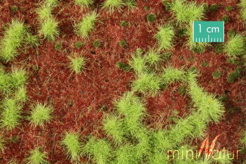 miniNatur Overwoekerde bosgrond - Lente - ca. 63x50cm - H0 (1:87) - (741-21)
