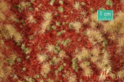 miniNatur Overwoekerde bosgrond - Late herfst - ca. 63x50cm - H0 (1:87) - (741-24)