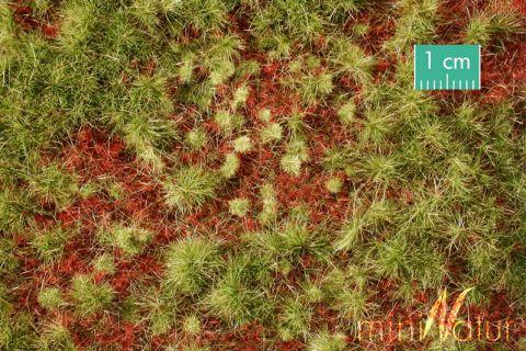 miniNatur Overwoekerde bosgrond - Vroege herfst - ca. 63x50cm - 0-1 (1:45+) - (741-33)